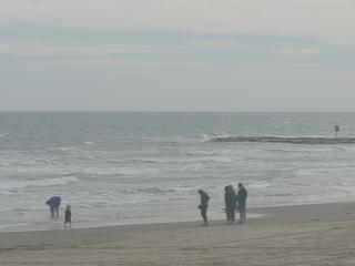 "Galveston Beach Rental Single suite ""The Vin"" HP2 - Galveston vacation rentals"