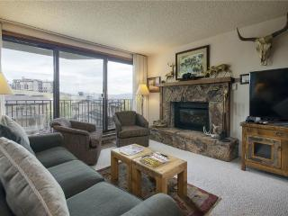 Bronze Tree Condominiums - BT207 - Steamboat Springs vacation rentals