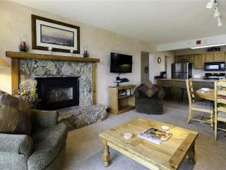 Bronze Tree Condominiums - BT504 - Steamboat Springs vacation rentals