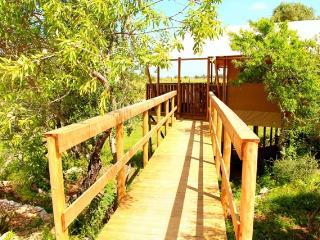 Casa Tuia Carvoeiro, glamping tent 6p. (tent4) - Carvoeiro vacation rentals