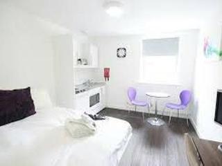 Luton: 5 Great Value, Modern Warm & Bright Studios - Luton vacation rentals