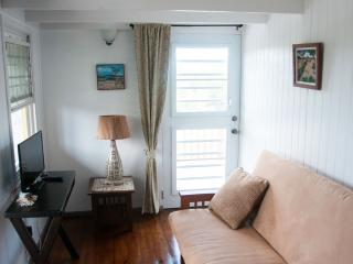 1 bedroom Apartment with Internet Access in Saint John's - Saint John's vacation rentals