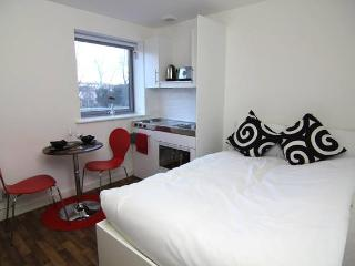 Luton: 4 Great Value, Modern Warm & Bright Studios - Luton vacation rentals