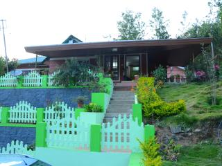 5 bedroom Guest house with Television in Munnar - Munnar vacation rentals