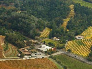 Sapphire Canyon Vineyard Guest House - Geyserville vacation rentals