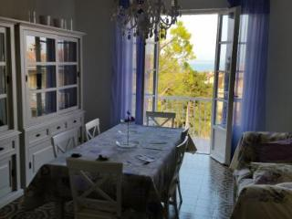 Charming Apartment with Garden and A/C - Sirmione vacation rentals