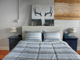 Cozy 1 bedroom House in Denver - Denver vacation rentals
