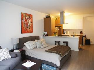 BEAUTIFULLY FURNISHED AND SPACIOUS STUDIO - Chicago vacation rentals