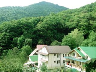 12 bedroom House with Internet Access in Krasnaya Polyana - Krasnaya Polyana vacation rentals