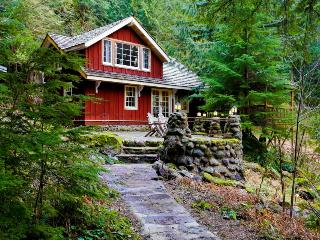 Gorgeous riverfront mountain home! - Rhododendron vacation rentals