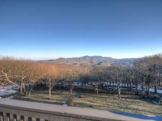 5 bedroom House with Central Heating in Beech Mountain - Beech Mountain vacation rentals