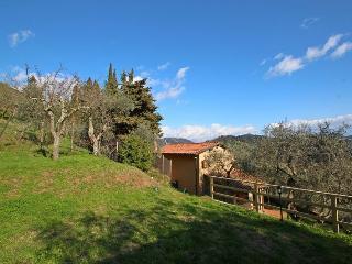 Corsanico-bargecchia - 2004001 - Stiava vacation rentals