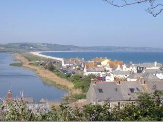 Beautiful House with Boat Available and Television - Torcross vacation rentals
