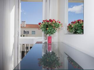 Garden Apartment in Ponta Delgada city - Ponta Delgada vacation rentals
