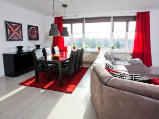 Lovely apartment near Centre & EXPO Antwerp + free private parking in garage - Antwerp vacation rentals