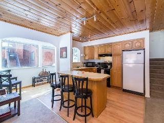 Condo for 5 with Rustic Charm in Truckee - Truckee vacation rentals