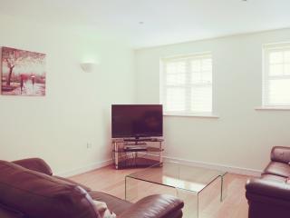 Nice 1 bedroom Apartment in Woking - Woking vacation rentals