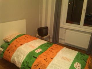 Chambre à louer pour un(e) étudiant(e) - Noiretable vacation rentals