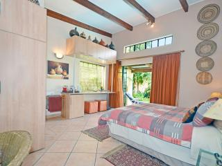 Inhlabathi-Earth Room 3 Cherry Tree Cottage B&B - Randburg vacation rentals