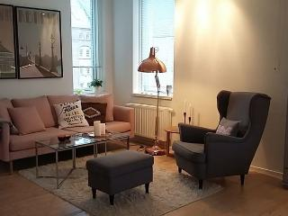 Bright 1 bedroom House in Copenhagen - Copenhagen vacation rentals