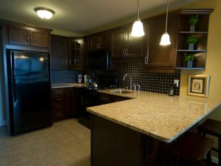 Upscale Condo South End Halifax - Halifax vacation rentals