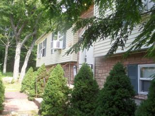 Gorgeous 5 Bedroom House Near Camelback and Casino - Tobyhanna vacation rentals
