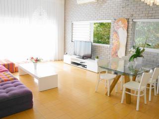 Luxury Sea View Apartment - Jaffa vacation rentals