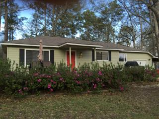 Wonderful House with Water Views and Microwave - Conroe vacation rentals