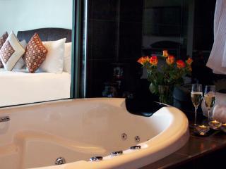 ARTHURS VIEWS Chapman Spa Suite - Arthurs Seat vacation rentals