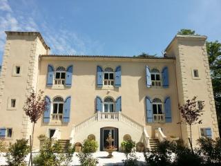 Joli petit chateau entier ds parc 4ha pisc/spa +.. - Mas-Saintes-Puelles vacation rentals