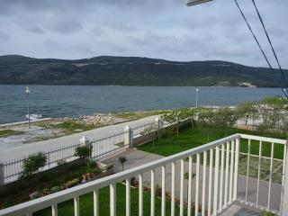 TH01684 Apartments Danijela / One bedroom A2 - Vrsine vacation rentals