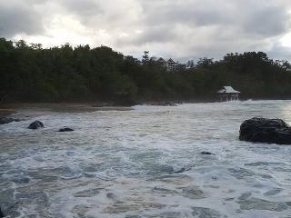 Forest by the Sea in Puerto Princesa - Puerto Princesa vacation rentals