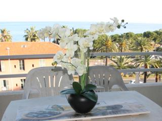CAlifornian Suite,2 beds flat, ac,terrace sea view - Nice vacation rentals