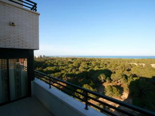 Wonderful Sea View Penthouse with roof terrace - Guardamar del Segura vacation rentals