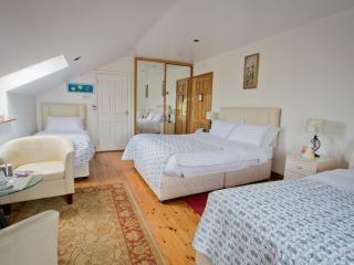 Rosdarrig Luxurious Bed and Breakfast - Roscommon vacation rentals