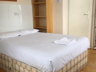 DOUBLE STUDIO FLAT IN CENTRAL LONDON - London vacation rentals