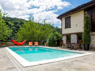 Bright House with Television and Water Views - Veliko Turnovo vacation rentals