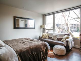 BRAND NEW chic CITY CENTER condo w/ PARKING OPTION - Seattle vacation rentals