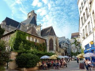 WALK TO ALL~LOUVRE,NOTRE DAME,ST.GERMAIN,MARAIS! - Paris vacation rentals