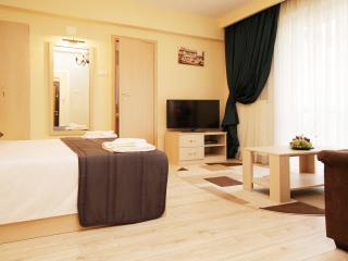 Cozy Bucharest Apartment rental with Internet Access - Bucharest vacation rentals