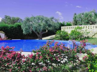 Monolocale con splendida piscina e giardino - Marina di Novaglie vacation rentals