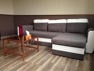 Studio tout confort dans Résidence privée - Le Bourget vacation rentals