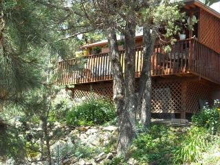 Gorgeous Mountaintop Views w/ Wifi and Dish - Ruidoso vacation rentals