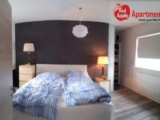 Large Apartment In Reykjavik Center - 7224 - Reykjavik vacation rentals