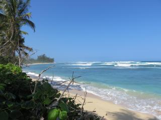Perfect Waialua vacation Apartment with Wireless Internet - Waialua vacation rentals
