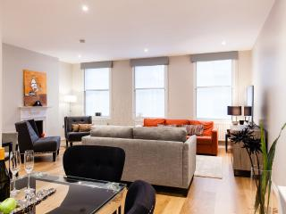 X-FACTOR! *NEW!*3bed2bath*OXFORD ST*deLUXE*DESIGN* - London vacation rentals