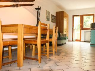 Nice Condo with Game Room and Television - Rivisondoli vacation rentals