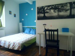 Roon 5min from the center and 15min from messe! - Nuremberg vacation rentals