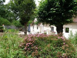 Charmante longère prés  zoo  Beauval et chateaux - Meusnes vacation rentals