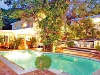 Lovely 9 Bedroom Villa in Anse Marcel - Anse Marcel vacation rentals